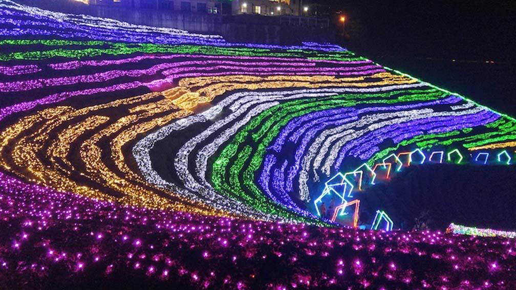 Boseong Green Tea Plantation Light Festival