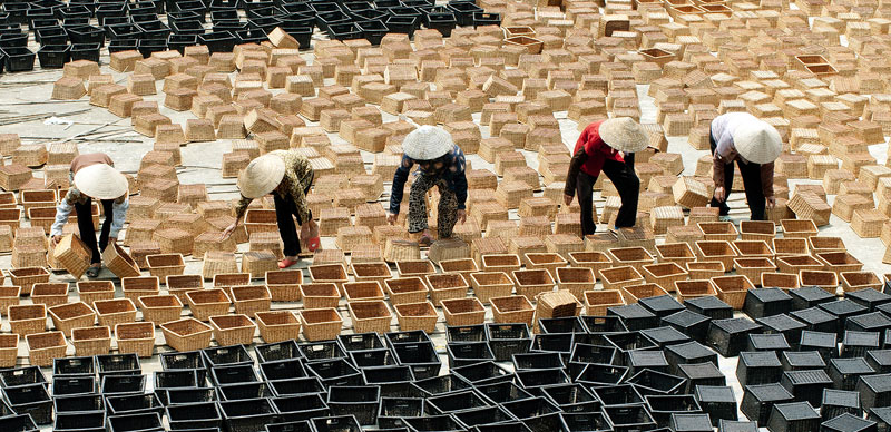Vietnam's bamboo and rattan exports grow strongly