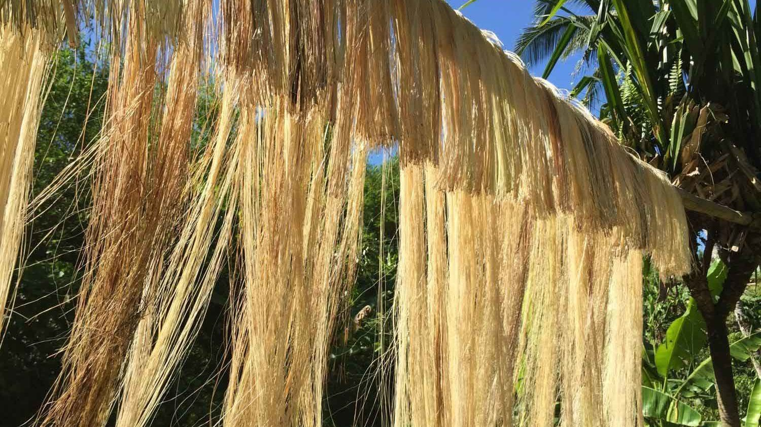 Banana silk fabric of Vietnamese in ancient documents